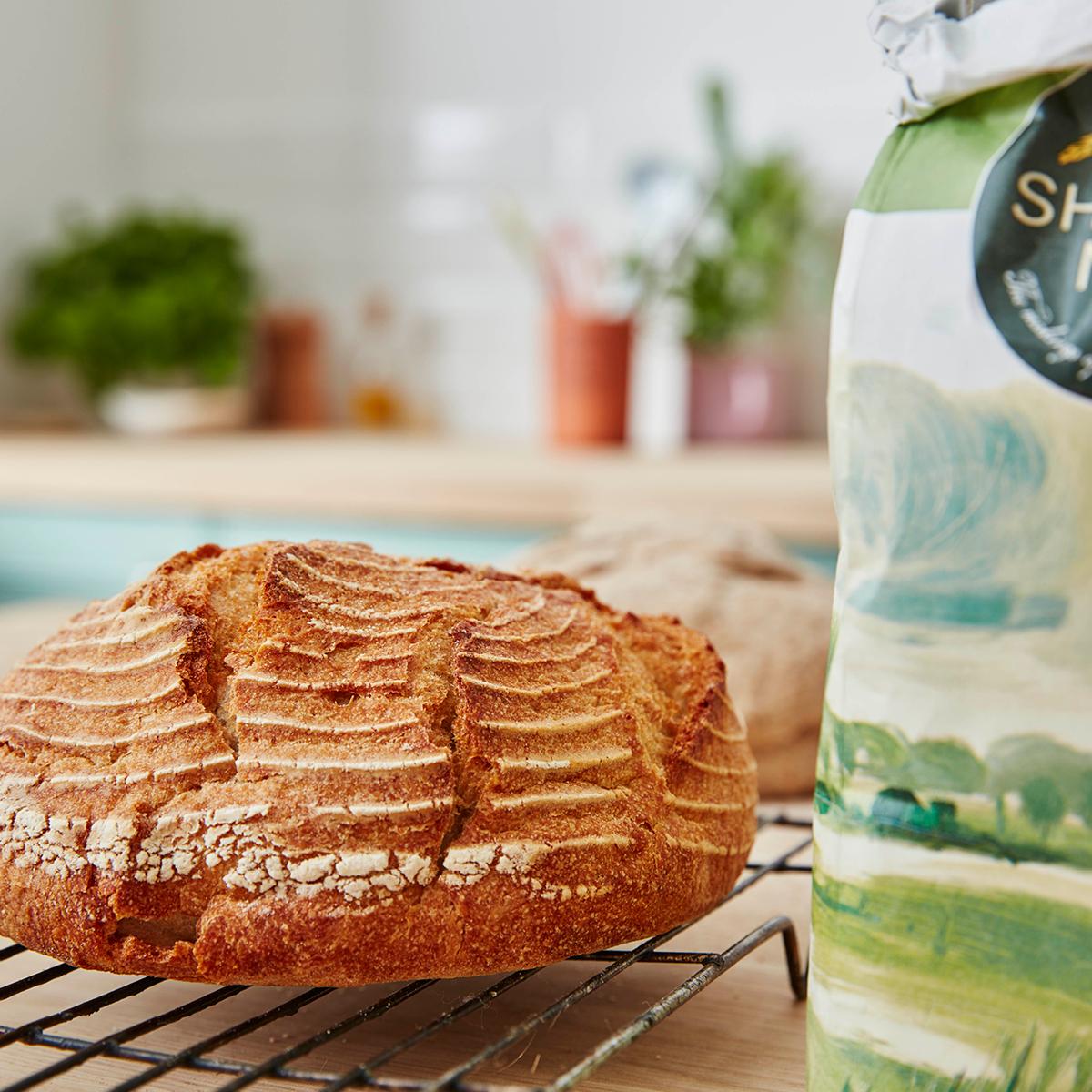 Quick 'Sourdough Style' Loaf