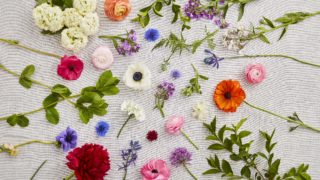 British Grown Flowers Spread