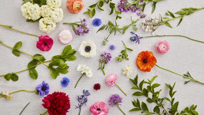 British Grown Flowers Spread