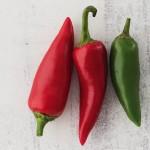 Lancashire Chilis