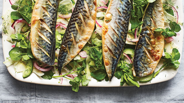 Grilled Mackerel served on a bed of watercress and red onion, on a white plate