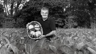 Peter Ascroft, Cauliflowers