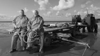 Shrimp Collecting in Morecambe Bay