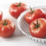 Tomato_0474