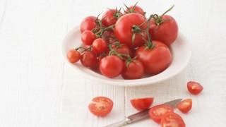 tomato_week
